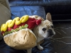 hot_dogs01