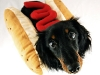 hot_dogs03