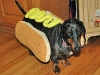 hot_dogs05