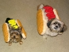 hot_dogs06