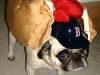 hot_dogs08