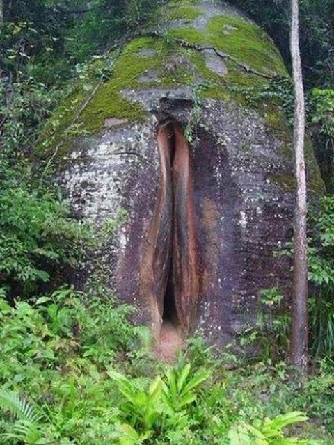 nature_sex_symbols_18